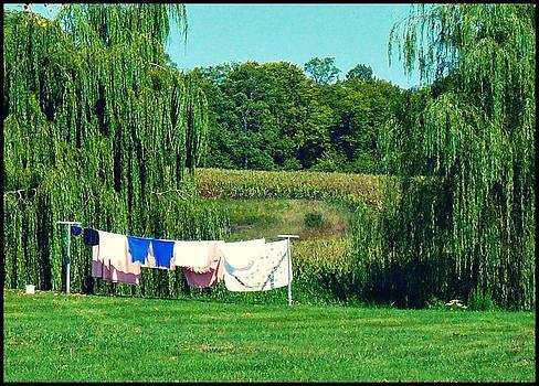 Laundry Day by Susan Olga Linville