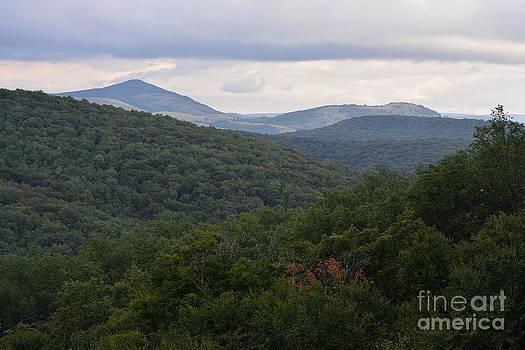 Laurel Fork Overlook II by Randy Bodkins