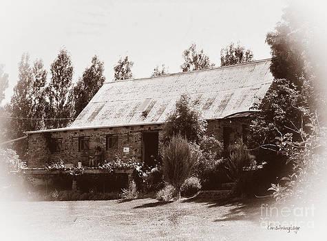 Lavandula Homestead by Chris Armytage