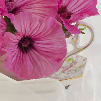 Sandra Foster - Lavatera Flowers In The Tea Cup