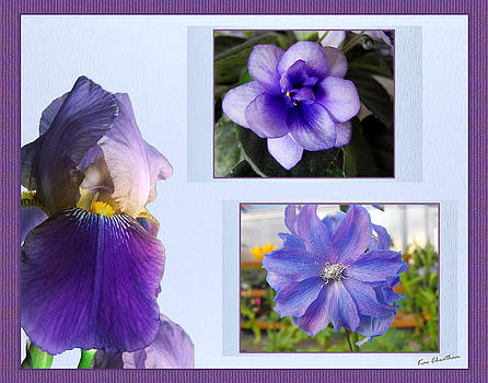 Kae Cheatham - Lavender Blooms Motif