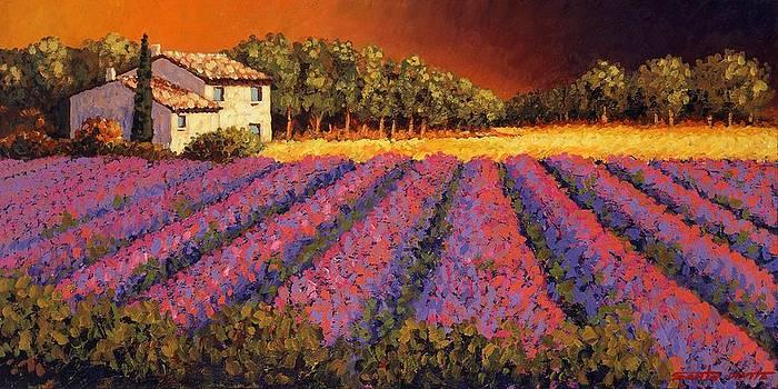 Lavender Field After The Rain by Santo De Vita