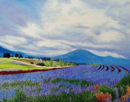Lavender Fields Forever by Laurie Cartwright
