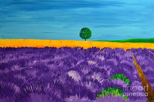 Lavender fields by Mariana Stauffer