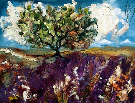 Lavender Fields - orig. for sale by Bernard RENOT