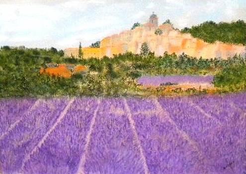 Lavender by Igor Kotnik