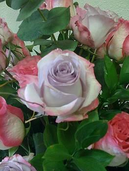 Lavender Laced in Pink by Bernadette Amedee
