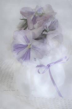 Sandra Foster - Lavender Pansies In Ribboned Pot
