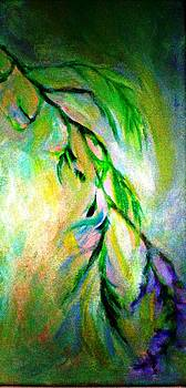 Lavender by Rashne Baetz