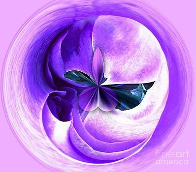 Lavender Rose Orbital by Judy Palkimas