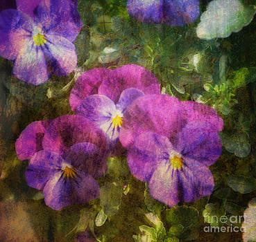 Layered Purple Beauties by Eva Thomas