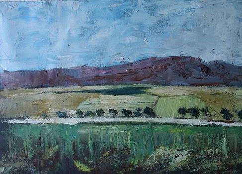 Le grand sud by Brigitte Roshay