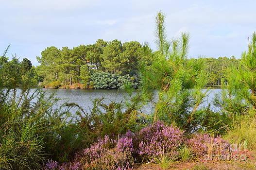 Bishopston Fine Art - Le Lac de la Magdeleine