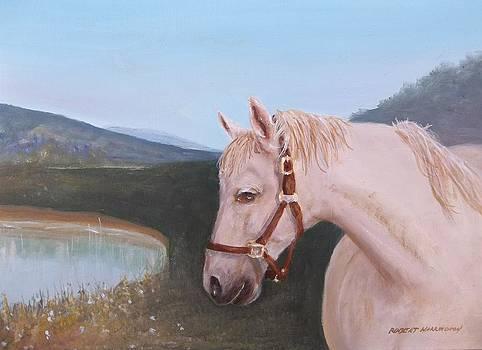 Lead a Horse by Robert Harrington