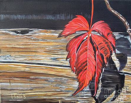 Leaf shadow by Marilyn  McNish