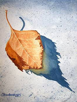Leaf With Shadow by Barbara Pelizzoli