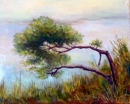 Leanin Tree by Alexandra Kopp