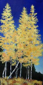 Leaning Aspen by Jane Friday