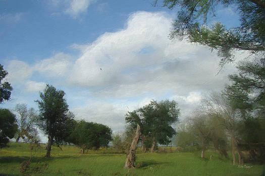 Leaning Elms Farm   4663 by Fritz Ozuna