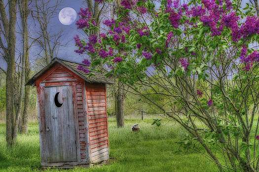 Leaning Outhouse by David Simons