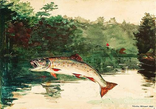 Roberto Prusso - Leaping Trout