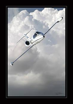 Learjet by Larry McManus