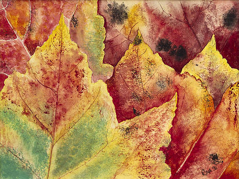 Leaves - Autumn by Rina Bhabra