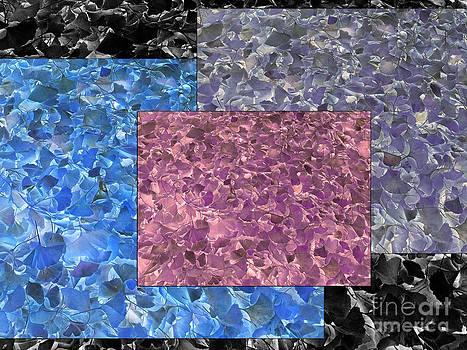 Melissa Lightner - Leaves in Color
