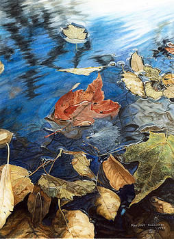 Leaves In Puddle 1 by Marshall Bannister