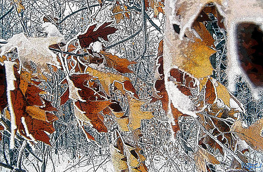 Leaves of Winter by Jon Lord
