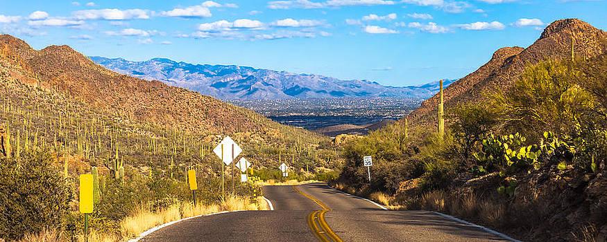 Road Leaving Tucson Mountain Park by Ed Gleichman