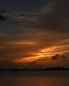 Mario Celzner - Leaving the Paradise