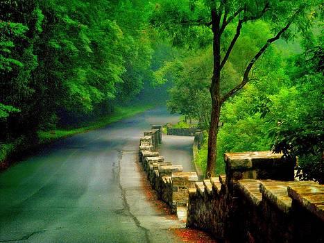Lehigh Parkway by Dave Hrusecky