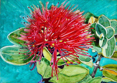 Lehua Blossom by Terry Holliday