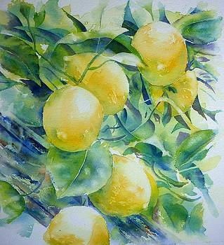 Lemon 3 by Thomas Habermann