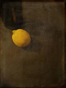 Lemon And Bottle by Lin Haring