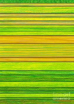 Lemon Limeade by David K Small