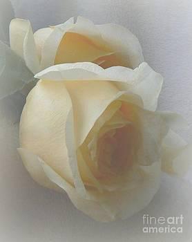 Lemon Spice Rosebud by Diana Besser