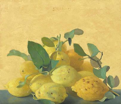 Lemons by Ben Rikken