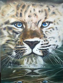 Leopard by Andrick Jean