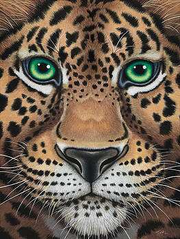 Wild Eyes Leopard face by Tish Wynne