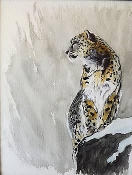 Leopard on a Rock by Maris Sherwood