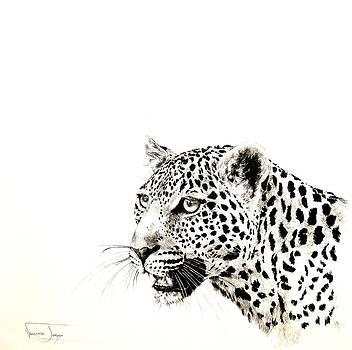 Leopard Portrait by Vanessa Lomas