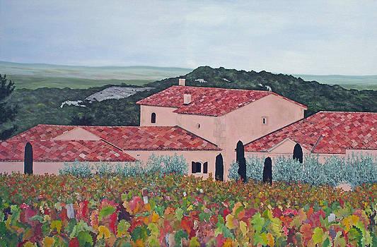 Les Baux de Provence Vineyard by Steven Fleit