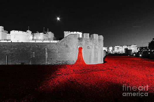 Lest We Forget by Tom Hard