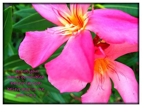 Let Not Your Hearts Be Troubled by Scripture Pictures