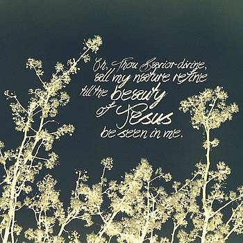 let The Beauty Of Jesus Be Seen In by Traci Beeson