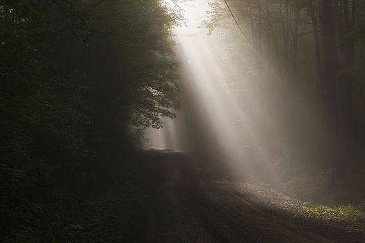 Let The Sun Shine by Frank Morales Jr