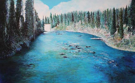 Lewis Falls Yellowstone by M Diane Bonaparte