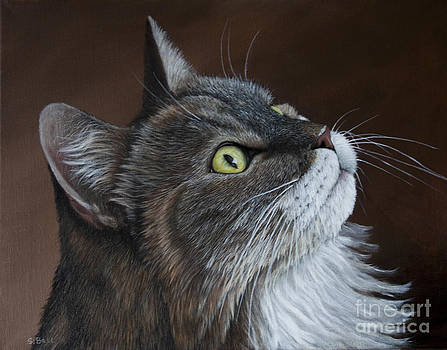 Libby The Rescued Kitty by Sid Ball